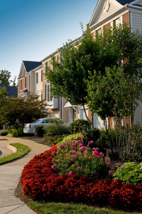 Increase Your Neighborhood's Beauty and Value With Bed and Border Maintenance