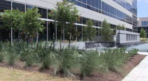 LMC Leads The Way In LEED Landscape Maintenance