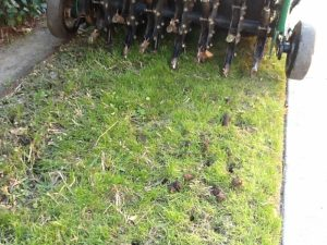 The Top Five Ways Soil Aeration Can Improve Commercial Properties