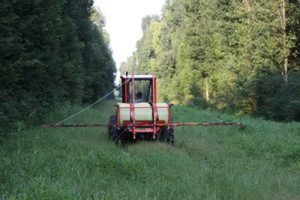 Increasing Safety Through Vegetation Management