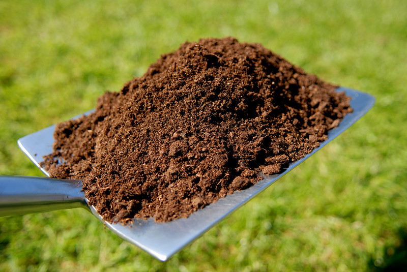 Does My Property Need Soil Aeration?