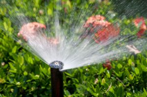 How Effective Is Your Sprinkler System?