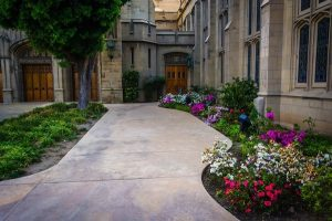 Four Reasons Why Your Place of Worship Needs Quality Landscaping and Tree Care