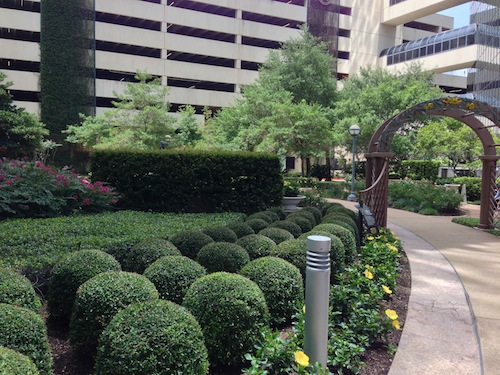 Four Ways Commercial Landscaping Can Attract Long-Term Tenants