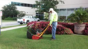 What Are Your Commercial Landscape Needs?