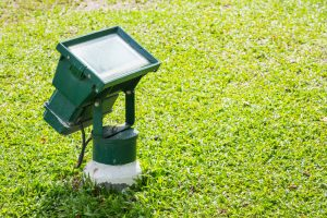 Understanding the Three Types of Commercial Landscape Lighting