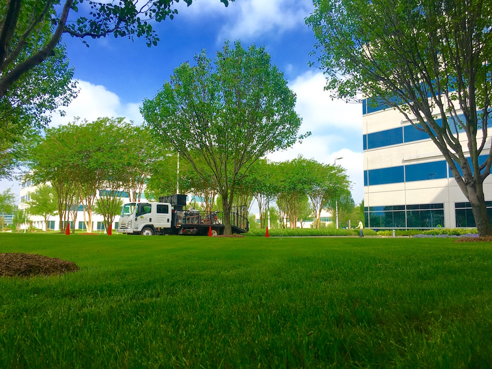Does My Commercial Property Need Landscape Enhancements?