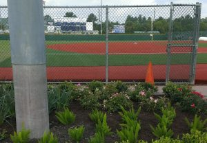 Why Athletic Field Maintenance Should Be Left To Landscape Professionals