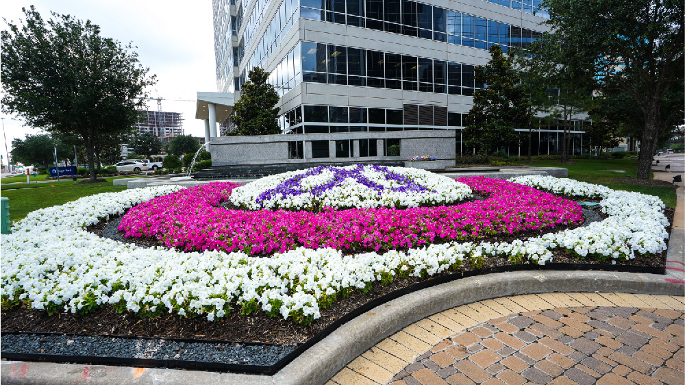 flowers arranged outside a building