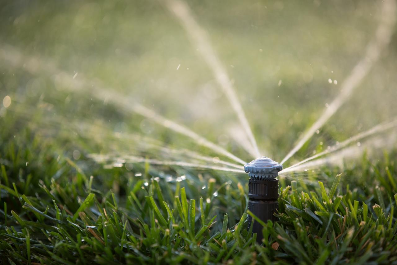 What is Smart Water Management?