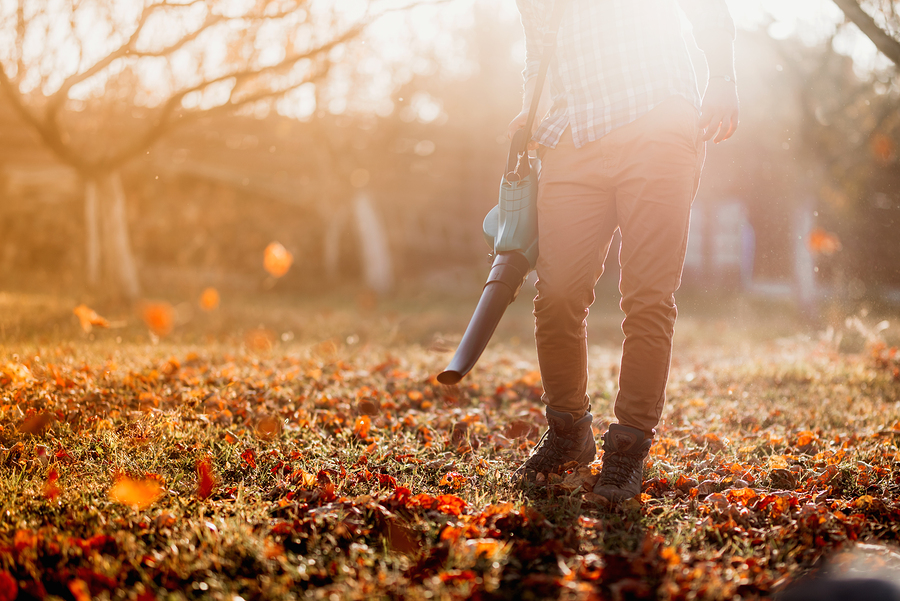 Tips for Your Commercial Landscape in the Fall